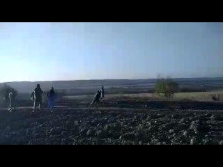 Видео от Юрия Андреенка