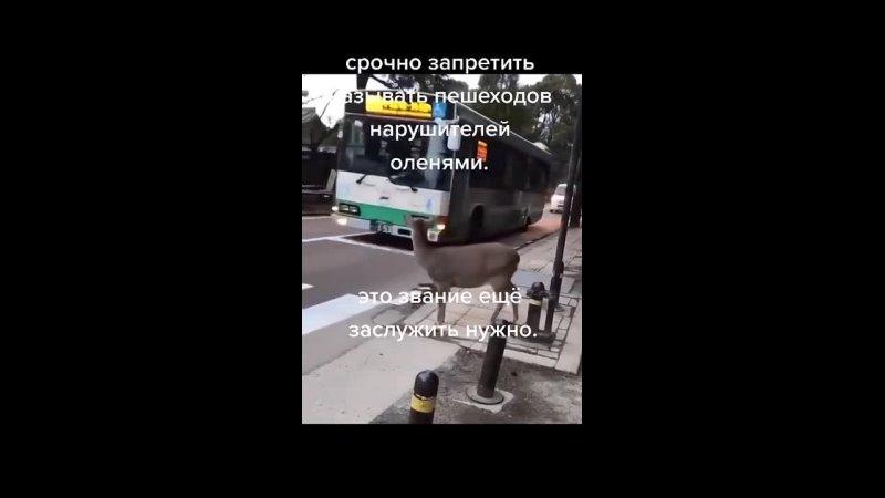 Видео от Промышленный инструмент