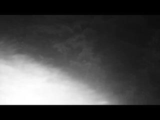 [ЛЕСНЫЕ] МЕДВЕДЬ против ЧЕЛОВЕКА | Как ВЫЖИТЬ при ВСТРЕЧЕ с МЕДВЕДЕМ | ПО ТАЙГЕ БЕЗ ОРУЖИЯ - ЛЕСНЫЕ