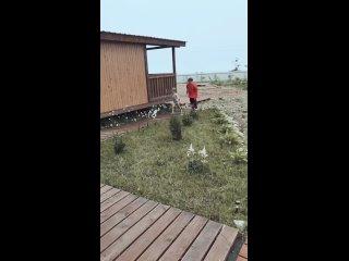 Video by Viktoria Krupitskaya