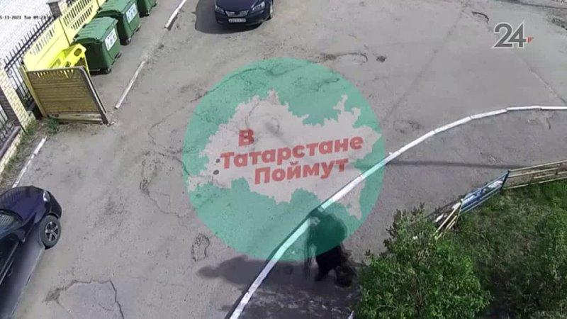Видео от За единое образовательное пространство в России