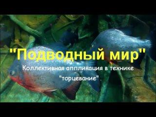 Video by Tatyana Fevralyova
