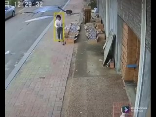 Кадры с камеры видеонаблюдения. Выжила ли девушка ...
