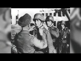 Что хотел сделать Гитлер на территории СССР в случае победы