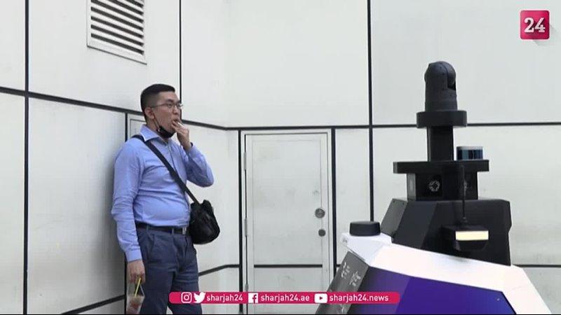 Видео от Аркадия Ростовского