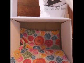 Коробка+футболка=уютный домик для кота 😻