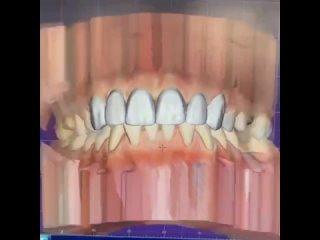 "Video by Центр семейной стоматологии ""Белый Лев"" | Курск"