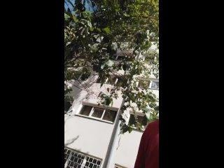 Видео от Павла Козырева