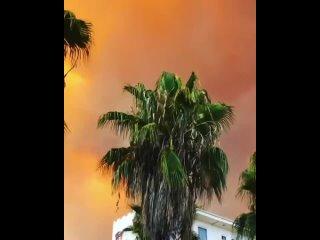 Пока в Турции горят 🔥 леса, а спецтехника занимается их тушением, туристам ничего не мешает продолжать отдых. Они позируют на фо