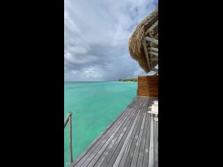 Видео от Светланы Хамулы