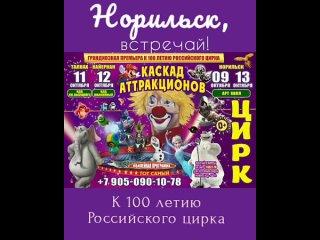 ‼Впервые в Норильске‼к 💯 летию цирка !!!🎪🎪🎪Состоит...
