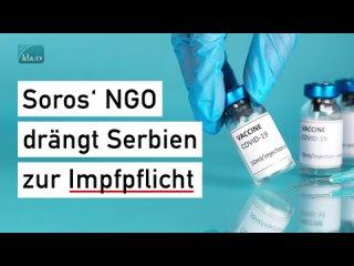 Soros' NGO drängt Serbien zur Impfpflicht