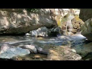 Интересный Сочи kullanıcısından video