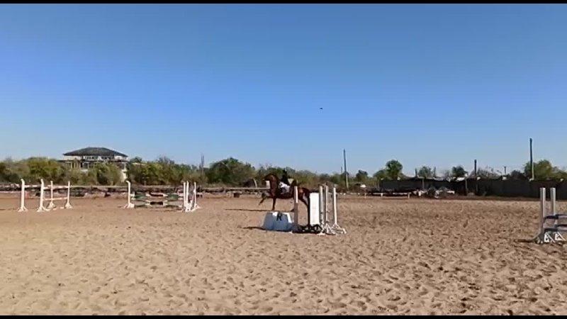 Видео от REITBLOG просто Насти
