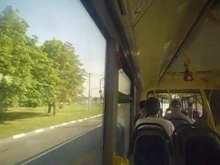 Автобус М (Каширская–Автозаводская)
