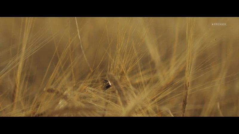 Видео от Кинозал*HD