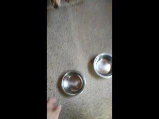 Видео от Татьяны Стекачевой
