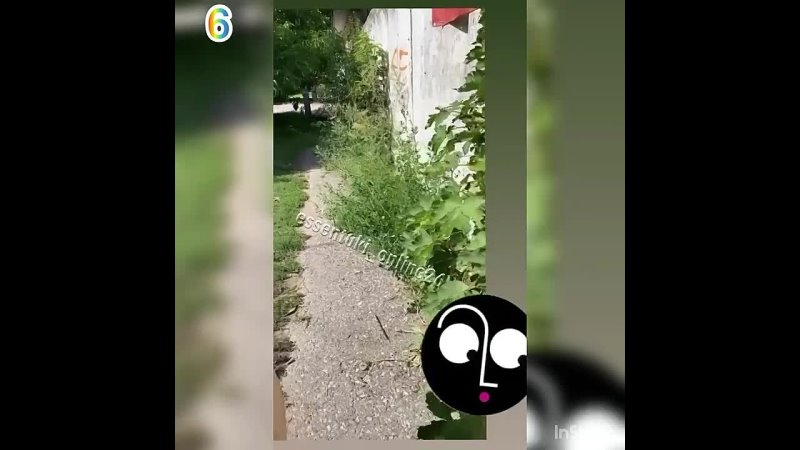Обращения от подписчиков ✅ 1️⃣ Просим обратить внимание на участок ст Ессентукская со стороны ул Гагарина дорога на кладбище