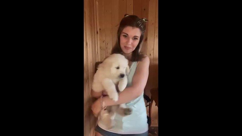 Видео от Ольги Андрийцо