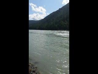 Video by Elena Gamayun