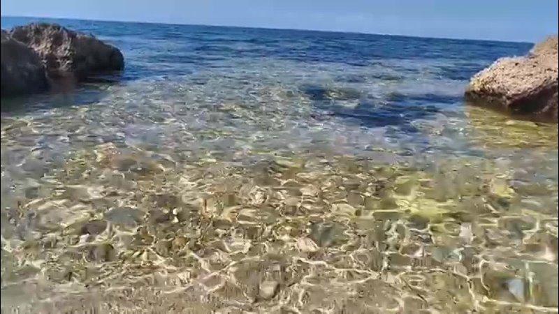 Наш дикий пляжик mp4
