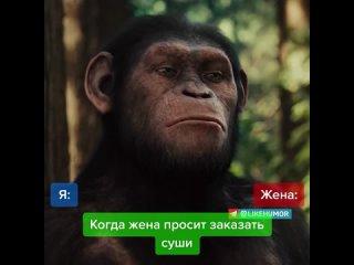 """Отрывок из х/ф """"Восстание планеты обезьян"""" (2011)"""