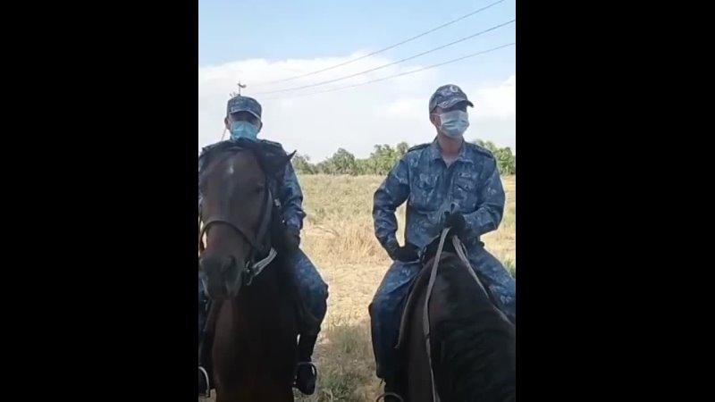 Видео от Департамента Полиции Жамбылского Области