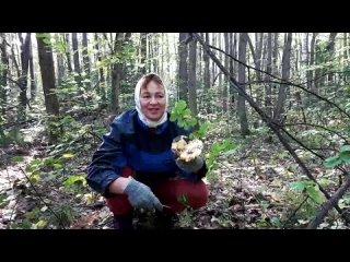Video by Lilia Pavlenko