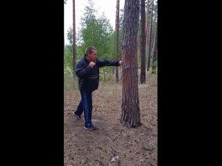 Тренировка в лесу по деревьям.