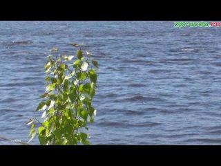 В Зеленодольске в заливе реки Волга мужчина зашел в воду и обратно не вернулся