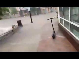 Video by Elisabeth Flamm