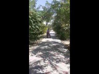 Видео от Толяна Чебакова