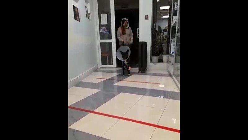 Видео от Милены Волковой