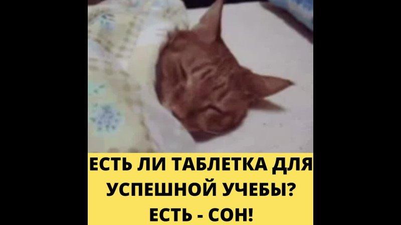 Видео от ЛОГОПЕД ЮЛИЯ БИРЮКОВА