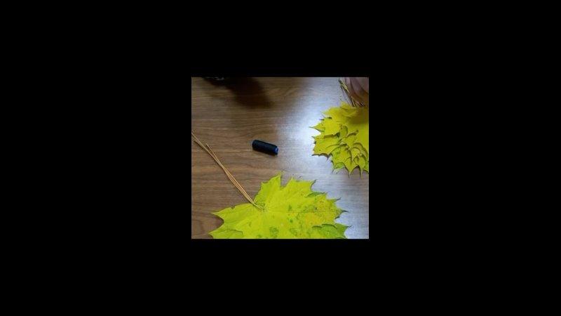 Видео от Шапкинская библиотека филиал №18