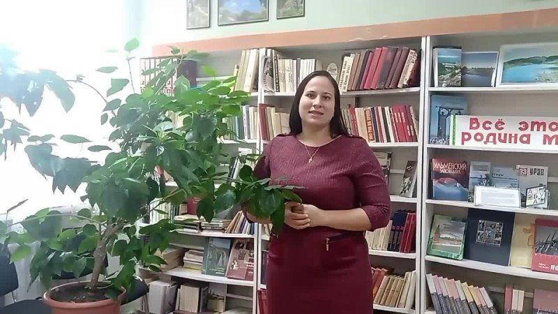 Видео от Красногорская взрослая библиотека
