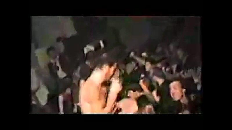 Видео от wave 2 3