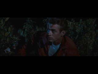 Rebelde sin causa (Nicholas Ray, 1955