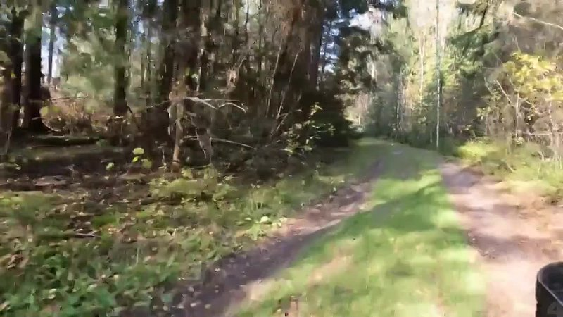 GoPro Hero 10 Black test video online video