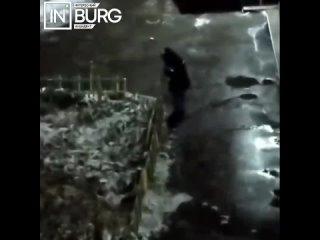 В Октябрьском районе мужчина утащил часть огражден...