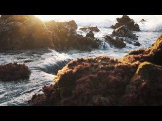 шум моря под звуки природы