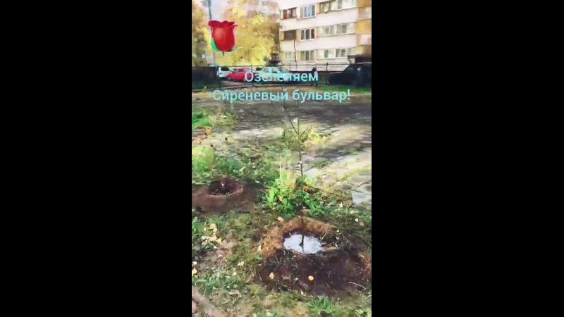 Видео от СПб ГБУ КЦСОН Выборгского района