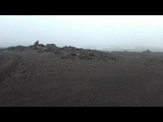 Видео от Клюв за скворечник