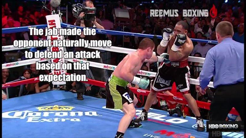 Сравнение ударки ммашника и боксера