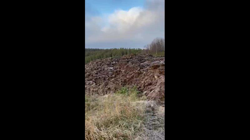 Видео от Кольский экоцентр