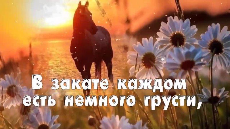 Доброй ночи🌛 Видео mp4