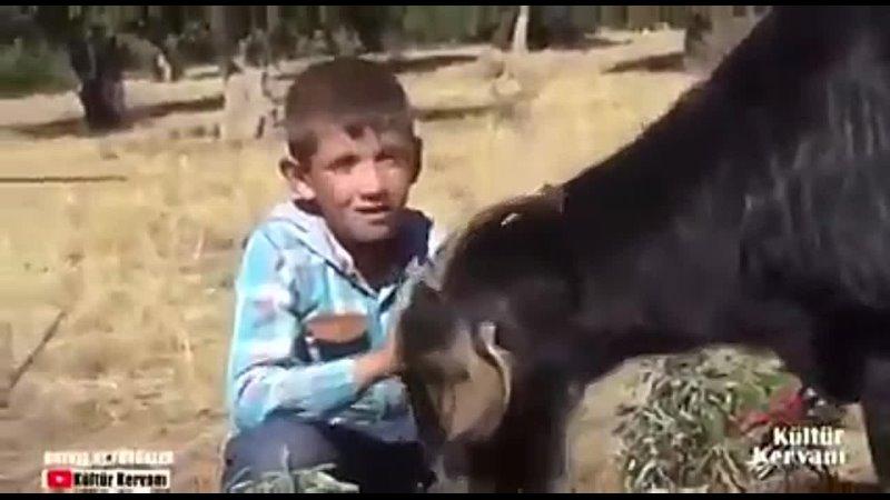 Видео от Mehmet Sadeceiş