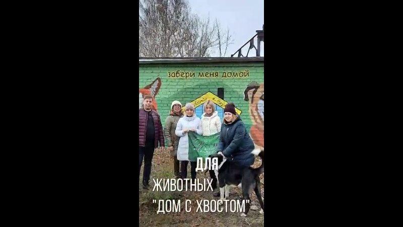 Видео от Антонины Будылиной