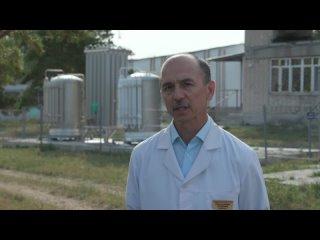 Жители Сызрани записали обращение с просьбой поддержать н...