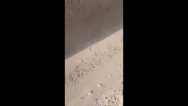 Видео от Русский Днепропетровск